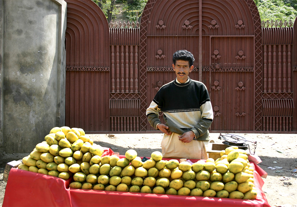 IMG 4075 edit copy - Kashmir